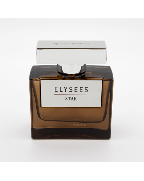 Men perfume Elysees Star EDP 100 ml -- UAB ESTELĖ